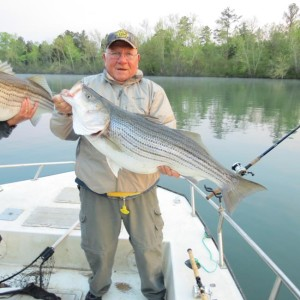 Jake's 25 pound Tennessee river Striper.
