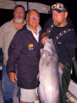 I needed some help to hold up this 45 pound James River blue catfish.
